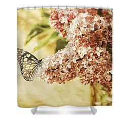 Sweet Lilacs Shower Curtain by Lois Bryan