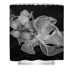 Shower Curtain featuring the photograph Sweet Memory by Beth Vincent