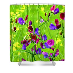 Shower Curtain featuring the photograph Sweet Peas by Byron Varvarigos