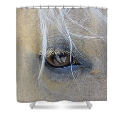 Sweet Soul Shower Curtain by Marilyn Wilson