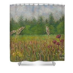 Calm Culloden Shower Curtain