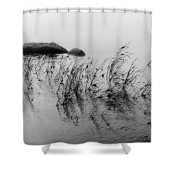 Sweet Water Shower Curtain