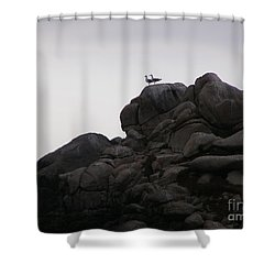 Sweethearts Shower Curtain by Bev Conover