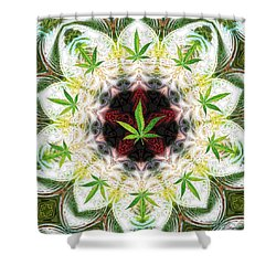 Sweetleaf Mandala Shower Curtain
