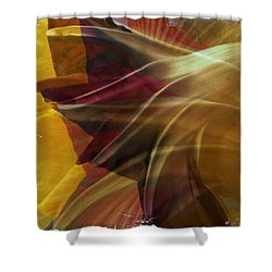 Swept Shower Curtain by Dorian Hill