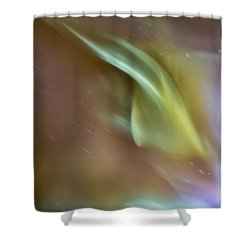 Swept Shower Curtain by Steven Poulton