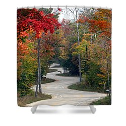 Swervy Road At North Port Shower Curtain