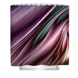 Swift River Shower Curtain