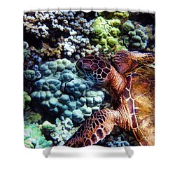 Swimming With A Sea Turtle Shower Curtain by Peggy Hughes