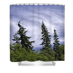 Swirling Clouds Crooked Trees Shower Curtain by Sharon Seaward