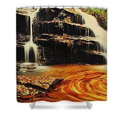 Swirling Leaves Shower Curtain by Rodney Lee Williams