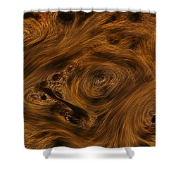 Swirling Shower Curtain