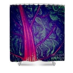 Swiss Chard Shower Curtain