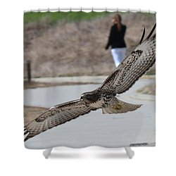 Swoop Shower Curtain