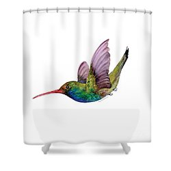 Swooping Broad Billed Hummingbird Shower Curtain