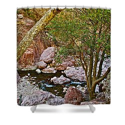 Sycamore And Cottonwood In Whitewater Catwalk National Recreation Trail Near Glenwood-new Mexico  Shower Curtain by Ruth Hager