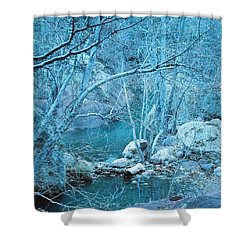 Sycamores And River Shower Curtain by Kerri Mortenson