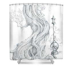 Shower Curtain featuring the drawing Sylvia And Her Lamp Drawing by Curtiss Shaffer