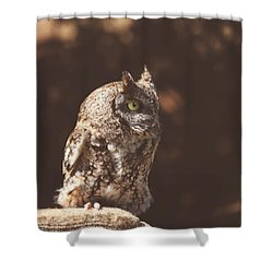 Sylvie Shower Curtain