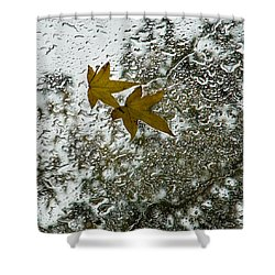 Symbols Of Autumn  Shower Curtain