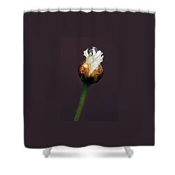 Synergy I Shower Curtain