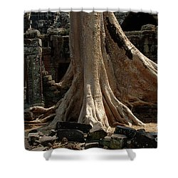 Ta Prohm Cambodia Shower Curtain by Bob Christopher