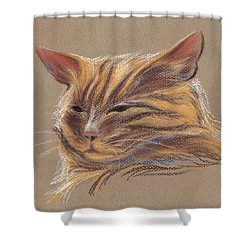 Shower Curtain featuring the pastel Tabby Cat Portrait In Pastels by MM Anderson