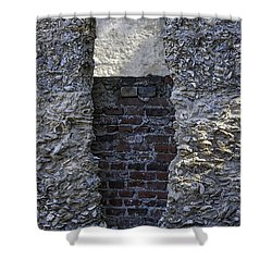 Tabby Wall With Red Brick Infill Shower Curtain by Lynn Palmer