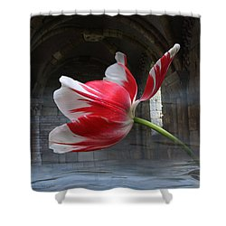 Tabula Rasa Shower Curtain