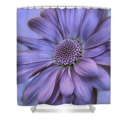 Taffeta And Pearls Shower Curtain