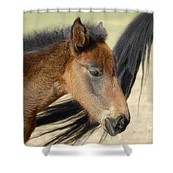 Tag-a-long Shower Curtain