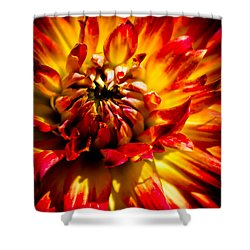 Tahiti Sunrise Shower Curtain