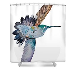 Da163 Tai By Daniel Adams Shower Curtain