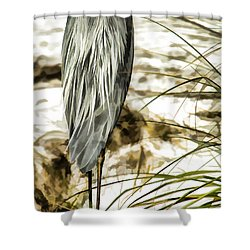 Tail Feathers Shower Curtain