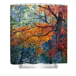 Take A Bough Shower Curtain