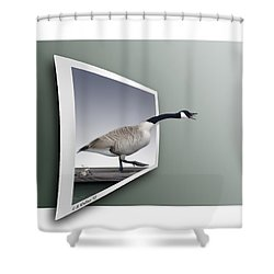 Take A Gander Shower Curtain by Brian Wallace