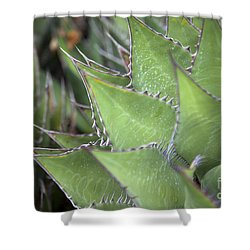 Take A Seat Shower Curtain by Amanda Barcon