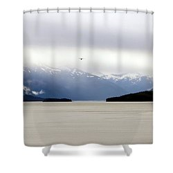 Shower Curtain featuring the photograph Take Flight by Jennifer Wheatley Wolf