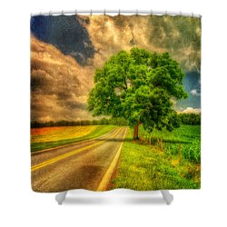 Take Me Home Shower Curtain by Lois Bryan