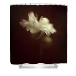 Take Me To The Secret Place Where All Your Dreams Come True Shower Curtain