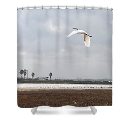 Shower Curtain featuring the photograph Take Off by Erika Weber