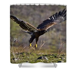 Take-off Shower Curtain by Mike  Dawson