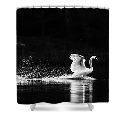 Take Off Shower Curtain by Rose-Maries Pictures