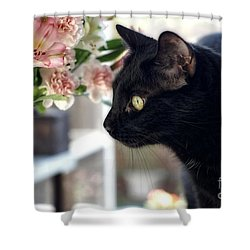 Take Time To Smell The Flowers Shower Curtain