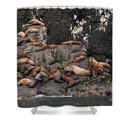 Takin' It Easy Shower Curtain
