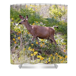 Shower Curtain featuring the photograph Taking A Stroll In The Country by Athena Mckinzie