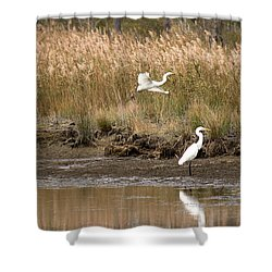 Shower Curtain featuring the photograph Taking Flight by Rebecca Davis