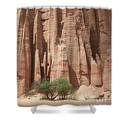 Shower Curtain featuring the photograph Talampaya Gorge Argentina by Rudi Prott
