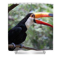 Talkative Toucan Shower Curtain