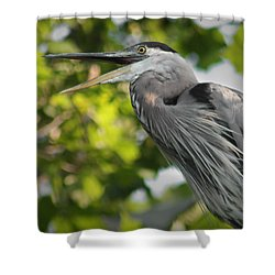 Shower Curtain featuring the photograph Talking Heron by Anita Oakley